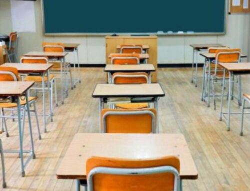 Educazione civica a scuola, corso online gratuito