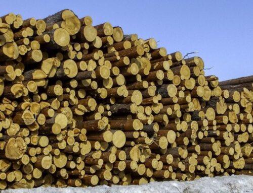 Federlegnoarredo, filiera al top in Europa per sostenibilità