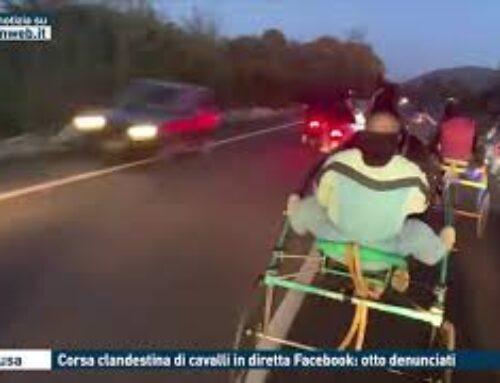 SIRACUSA – CORSA CLANDESTINA DI CAVALLI IN DIRETTA FACEBOOK : OTTO DENUNCIATI