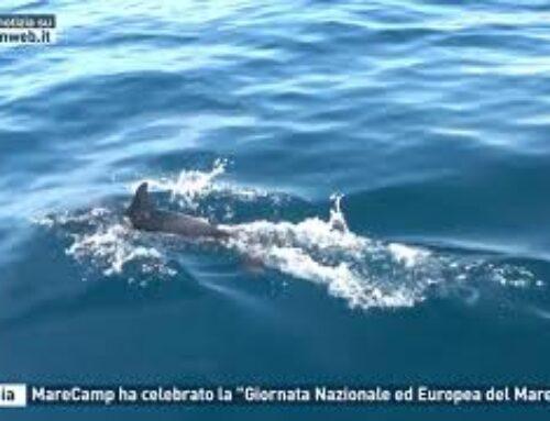 """Catania – MareCamp ha celebrato la """"Giornata Nazionale ed Europea del Mare"""""""