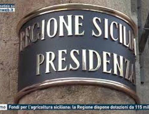 Palermo – Fondi per l'agricoltura siciliana: la Regione dispone dotazioni da 115 milioni