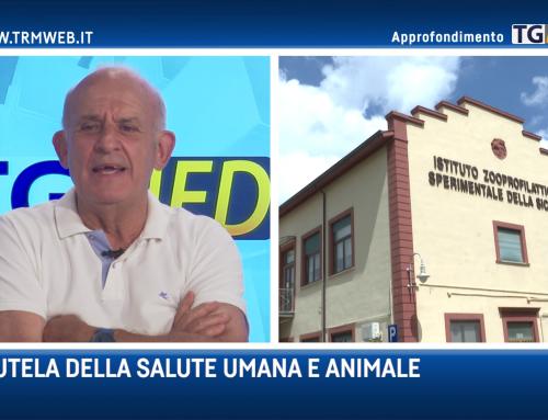 TgMed Approfondimento | Istituto Zooprofilattico Palermo