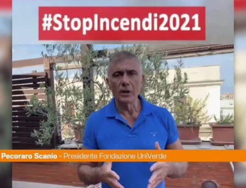 """Incendi, Pecoraro Scanio: """"Occorre un'azione forte"""""""